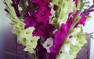 Flowers Always Bloom