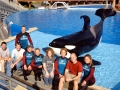 Sea-World-1